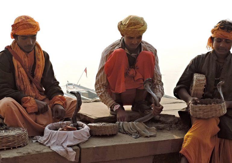 30.Varanasi Boys and Cobras