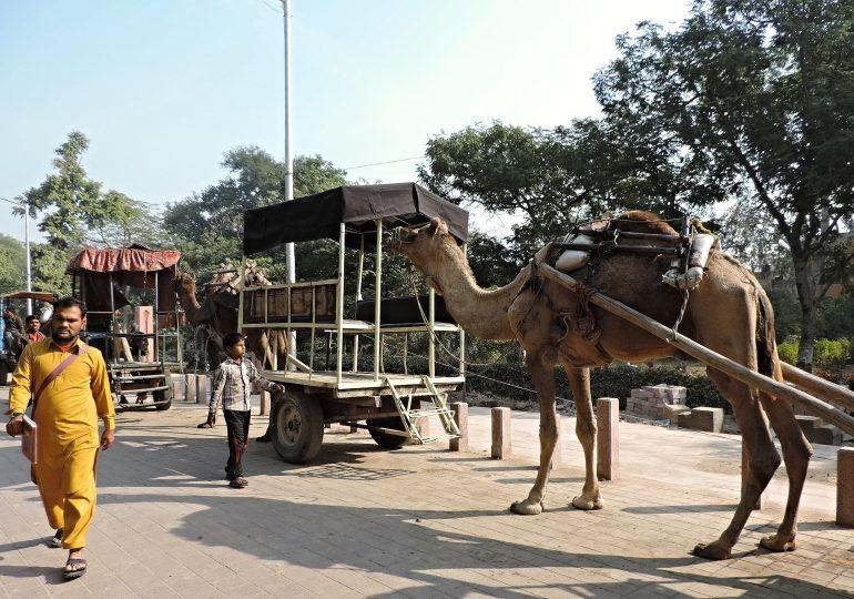 8.Agra State Uttar Pradesh